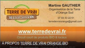 logo Terre de Vrai Orange
