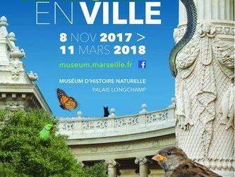 affiche de l'expo Nature en Ville