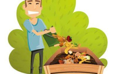 Semailles et le compost