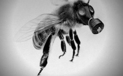 Marche mondiale contre Monsanto