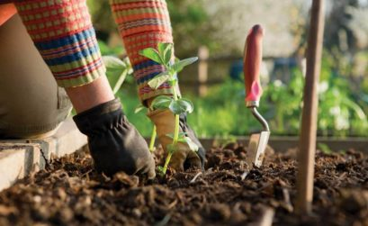 atelier jardinage Lauris