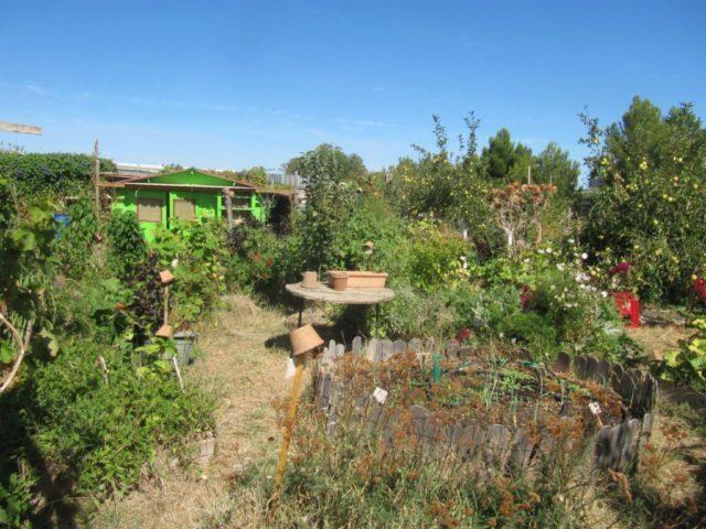 jardinot jardin St Louis Marseille