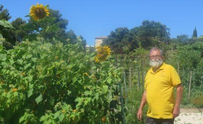 le PNR Sainte-Baume et les tomates