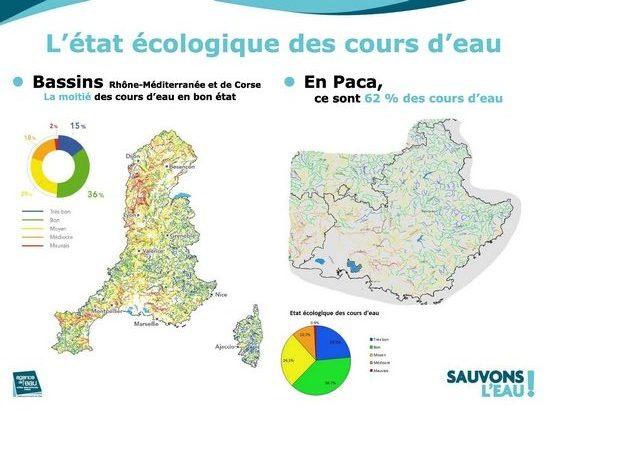 l'état écologique des cours d'eau