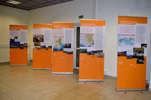expo Transhumance