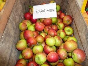 marché des fruits et saveurs d'autrefois à Manosque