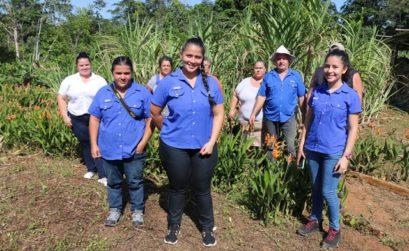 Ferme bio Costa Rica
