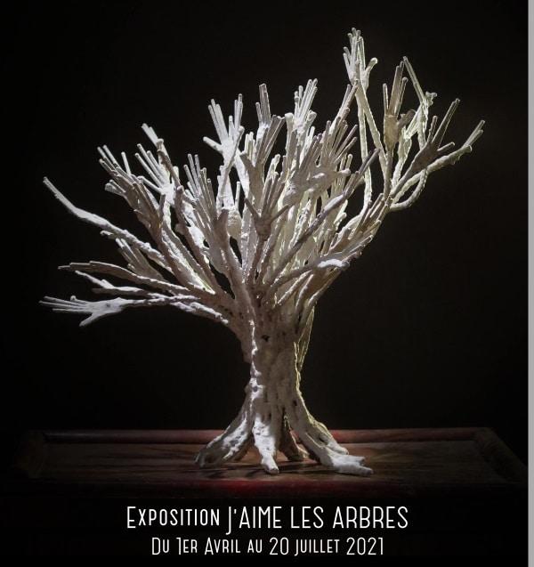 """affiche de l'expo """"j'aime les arbres"""" à l'Isle-sur-la-Sorgue"""