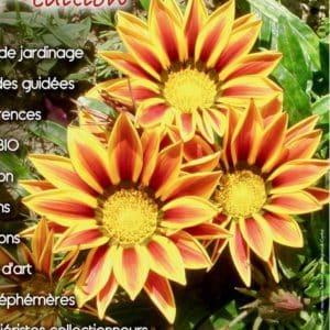 logo Plantes Rares