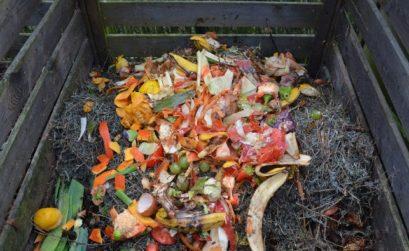 le compost pour le sol