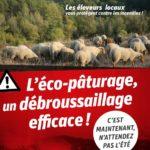 les moutons pompiers