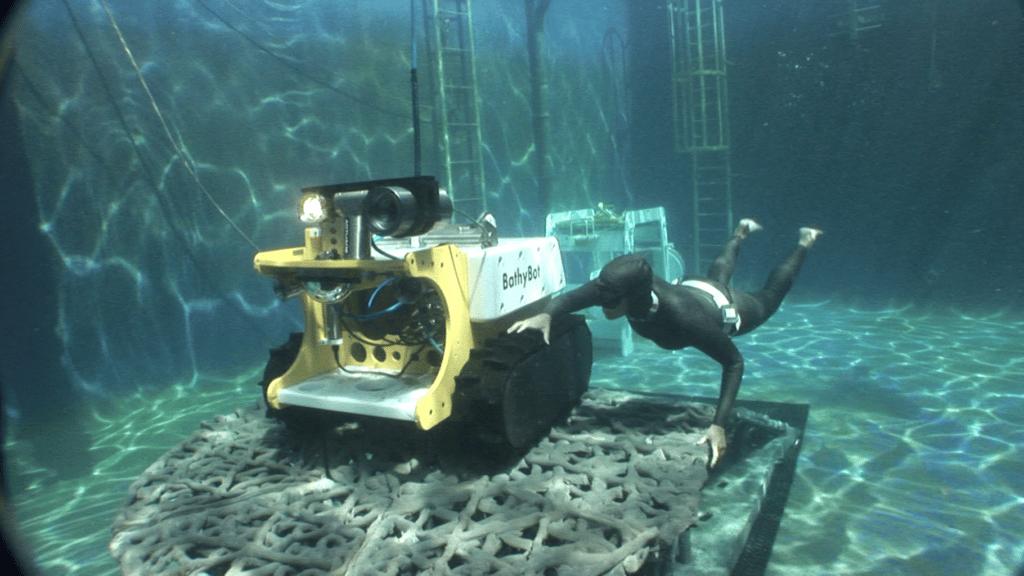 les organismes sous-marins au fond des océans
