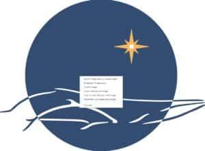 logo MIRACETI pour Ceta sciences