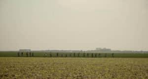 photo du film Douce France